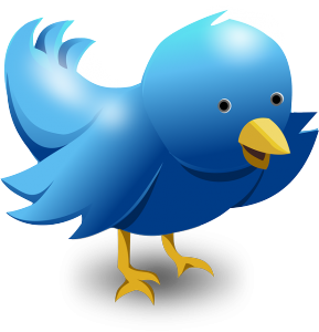 Picture of twitter bird