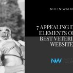 Veterinary Websites (Blog Cover)